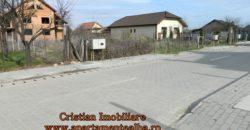 1/2 Duplex la rosu, str Apuseni-Micesti-strada pavata cu canalizare