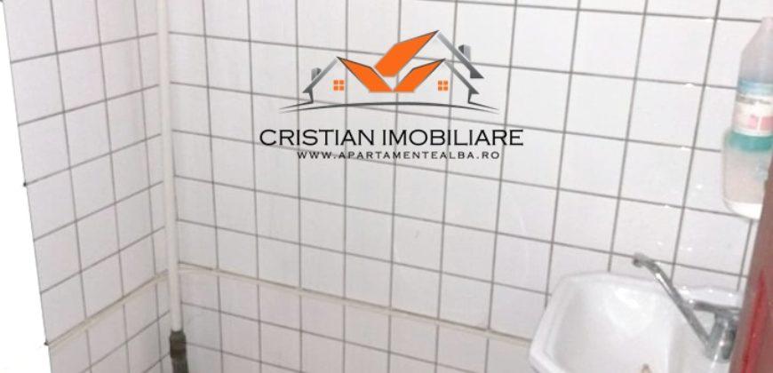 Spatiu comercial S+P+E, 500 mp utili, Alba-Iulia-Cetate !!!