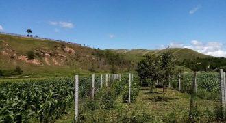 Teren de vanzare, 1 000 mp, Paclisa