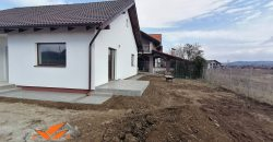 Casa individuala Alba -Micesti