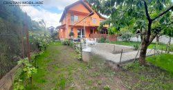 Casa cu curte, gradina 650 mp in Cetate-Lidl